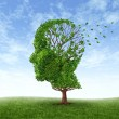 Continuing survey about the well-being of individuals with Acquired Brain Injuries (ABI)