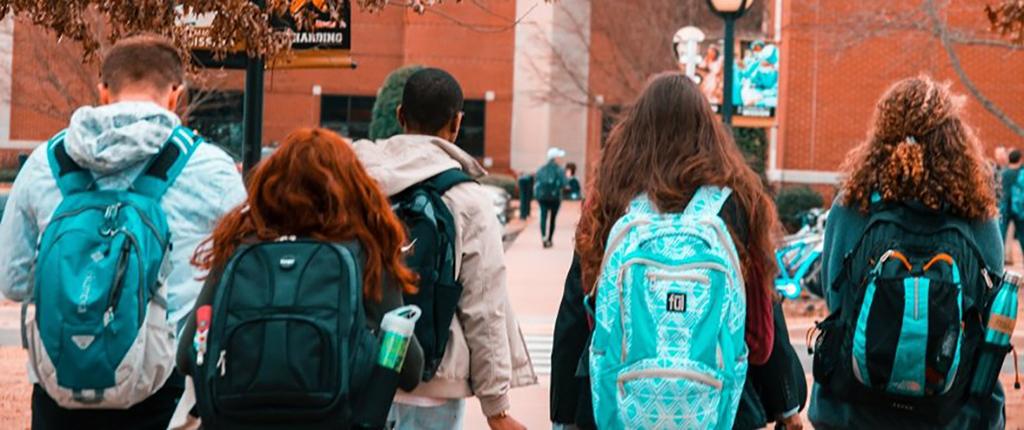 studenti con disabilità capability approach per favorire l'inclusione nel sistema universitario