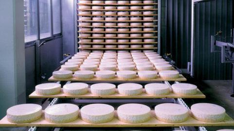 campagna promozione formaggio Piave DOP IGP