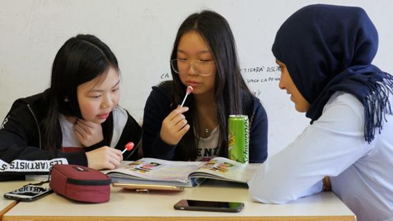 valutazione impatto sociale valutazione impatto SOI inclusione sociale impact evaluation social inclusion