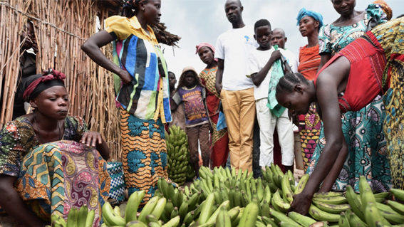 ecosistema ecosystem social business socila enterprise imprese sociali senegal filiera agricola agro-industrial supply chain
