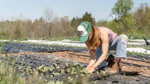 circular economy social business imprese sociali SIRCLES agricoltura biowaste management gestione dei rifiuti ambiente riciclo riuso